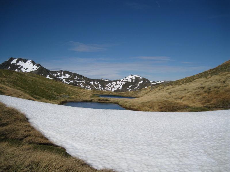Lewis Pass Tops (Lewis Pass)