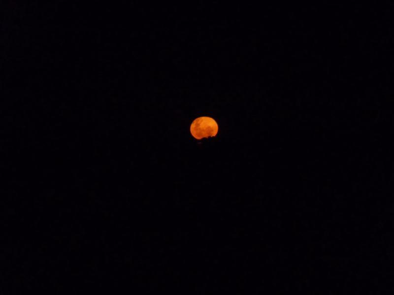 Moonrise (Abel Tasman)