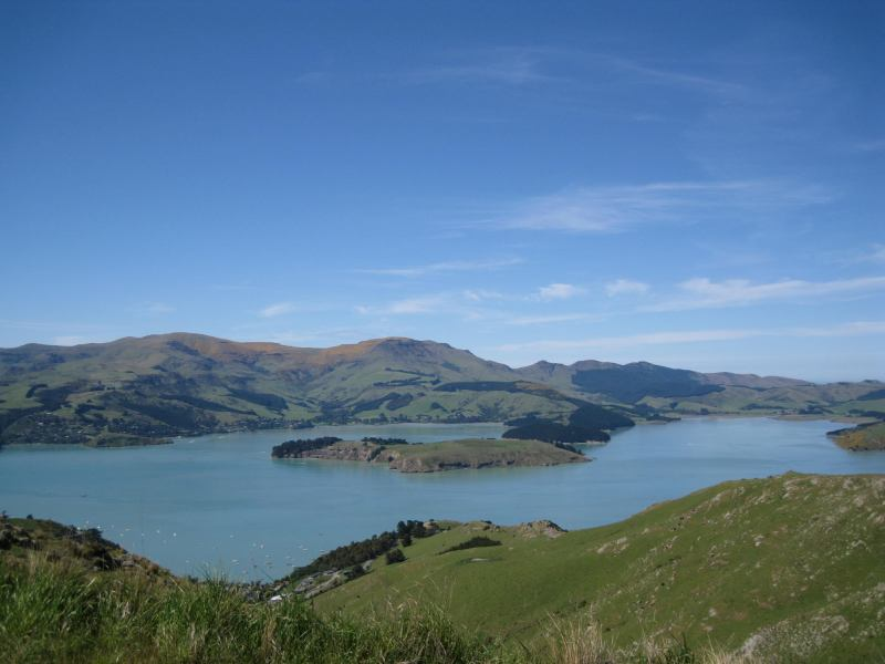 View of harbour (Christchurch)