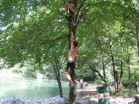 Monkeys in a tree 2 (OO.cup, Slovenia)
