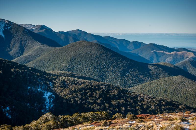 View (Walk up Mt Arthur July 2021)