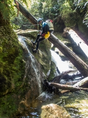 Craig lowering himself down (Canyoning Waterfall Creek)
