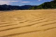 Nice golden sand (Wainui, Golden Bay)
