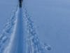 Heading over the Jamtalferner (Ski touring Jamtalhuette)
