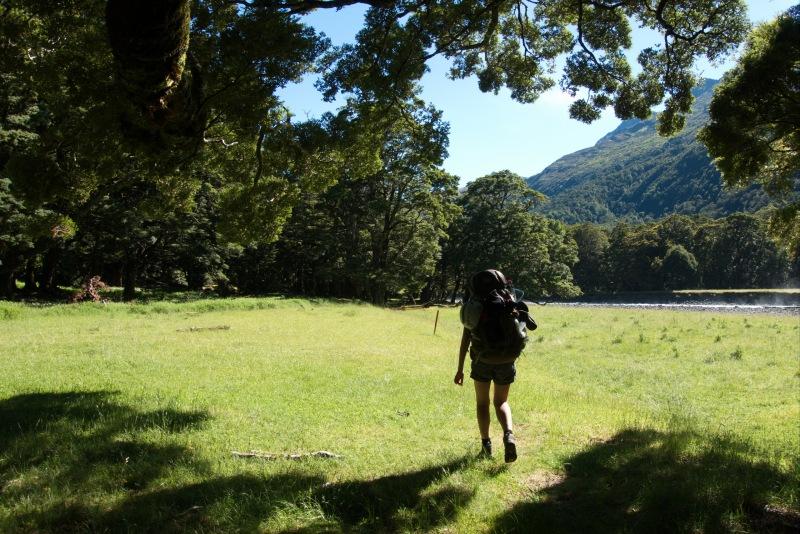Trees (Rabbit Pass Tramp Dec 2014)