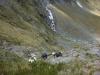 Steep descent down Rabbit Pass (Rabbit Pass Tramp Dec 2014)