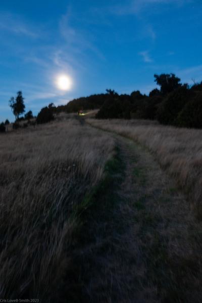 Walking along the ridge (Rod Donald Hut March 2021)