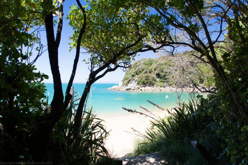 View down towards beach (Seakayaking Abel Tasman Dec 2014)