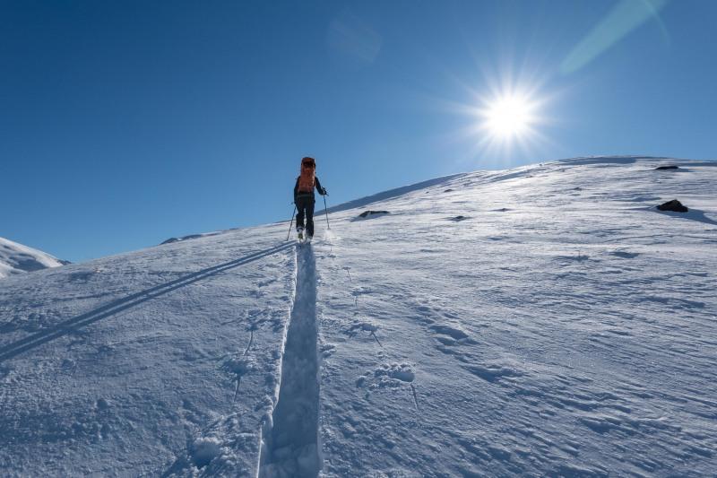 Craig skinning up the hill (Ski Touring Camp Stream Hut Aug 2021)