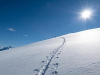 Snow and tracks (Ski Touring Camp Stream Hut Aug 2021)