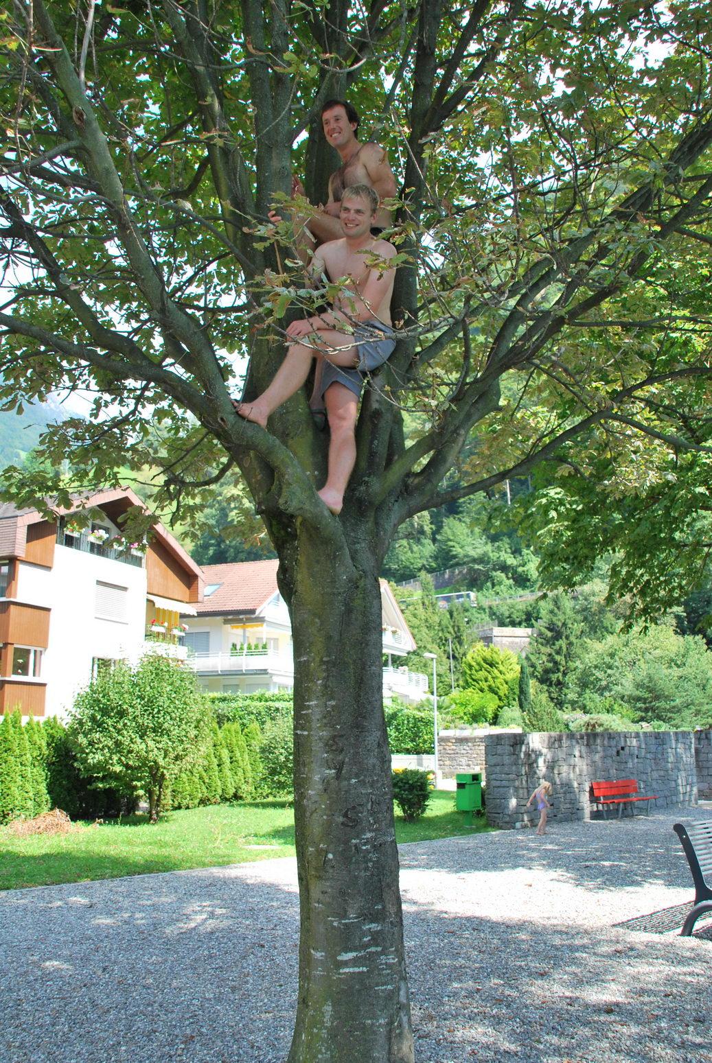 lads-in-tree-swiss-o-week-switzerland