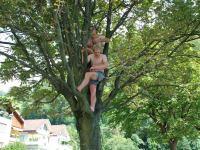 chris-cris-in-tree-swiss-o-week-switzerland