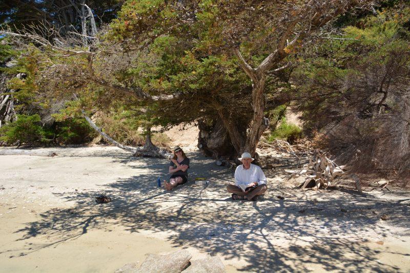 Reading on the beach (Takaka 2013)