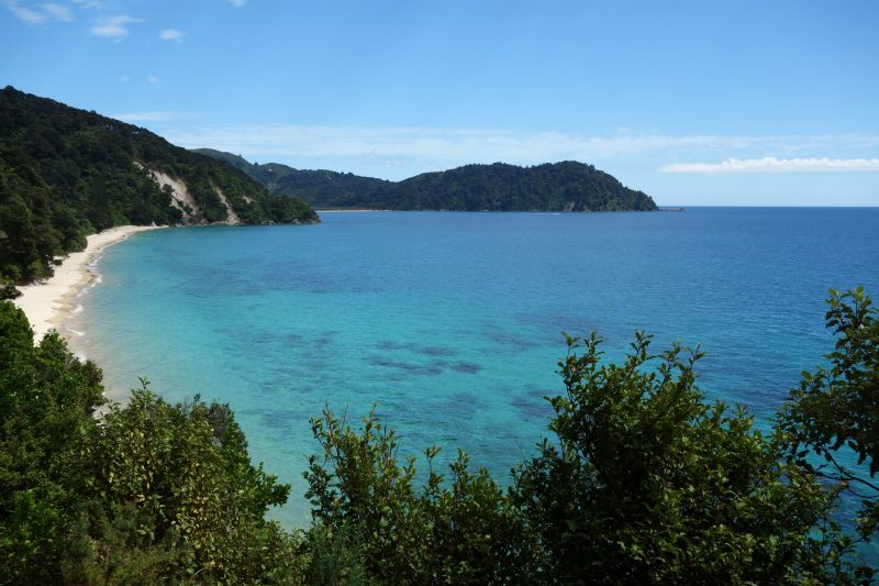 View of Goat Bay from the track 2 (Takaka 2013)