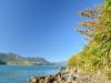 View from Tata Islands 2 (Takaka 2013)