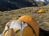 Tents (Hopkins Valley Tramp Jan 2015)