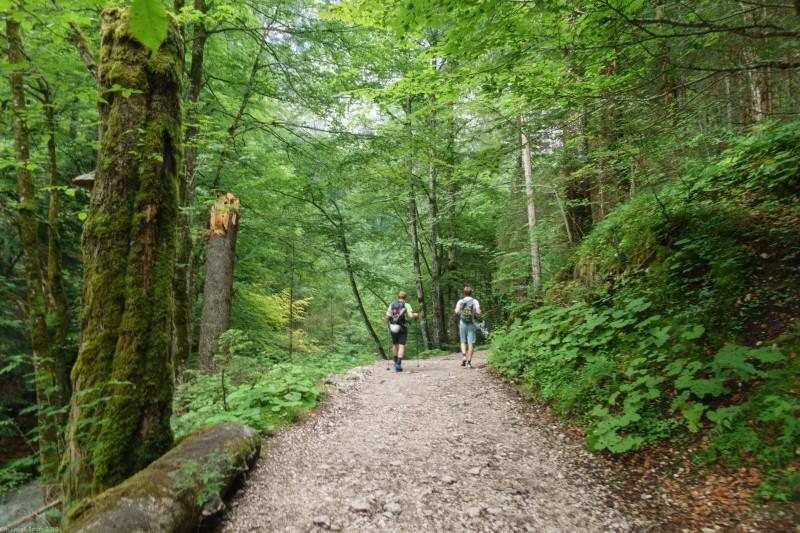 Walking again (Zugspitze July 2018)