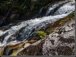 Nice water (Canyoning Waterfall Creek)