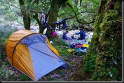 Camping in Jupiter Creek (Garibaldi 2019)