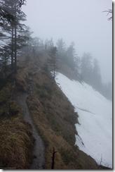 Dreary weather (Schuttannen, Austria)