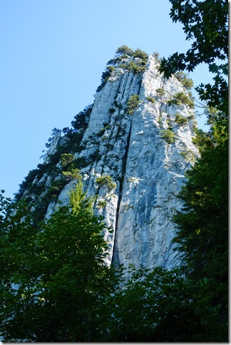 View up to the crag (Löwenzähne Westkante Sept 2019)