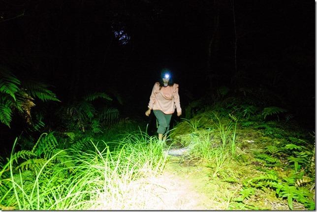 Ari nearing Blue River Hut (Ari visits 2020)