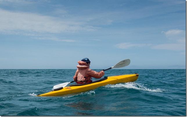 Kayaking again (Ari visits 2020)
