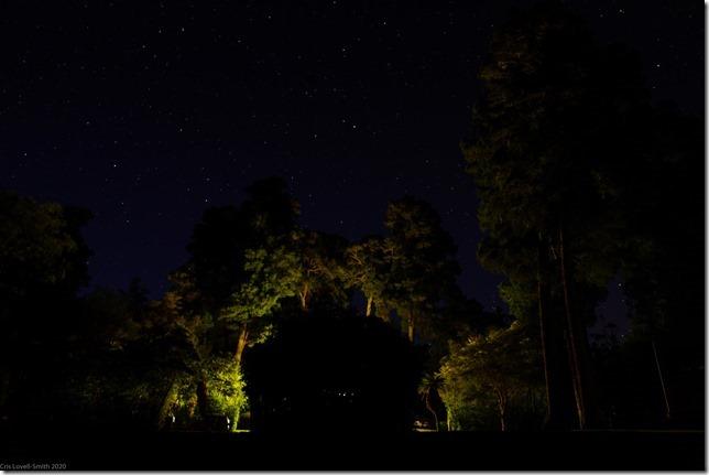Night time at Pelorus Bridge (Ari visits 2020)