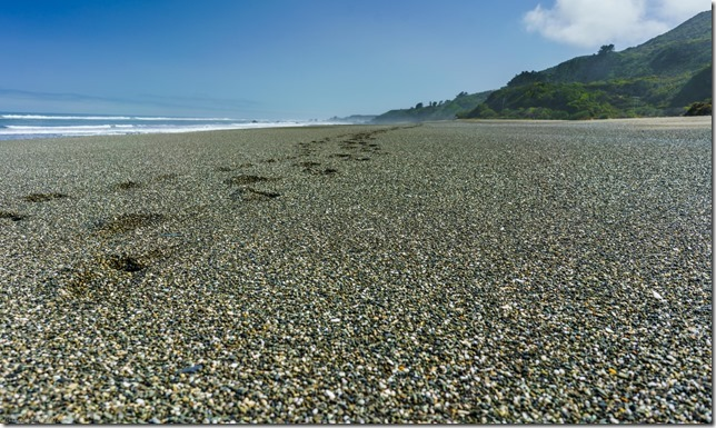 Stony west coast beach (Ari visits 2020)