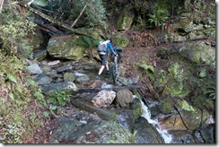 Pat crossing a stream (MTB Kill Devil Track Aug 2020)