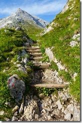 Steps (Watzmann Überschreitung Aug 2019)