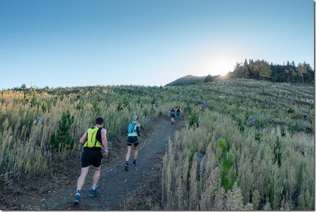 Starting up the single track (Mt Isobel Challenge 2021)