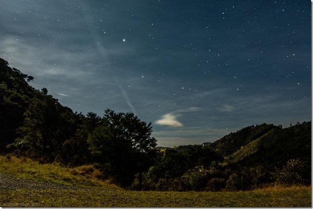 Night photo in Nelson