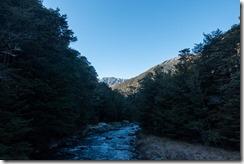 View up Lees Creek (Climbing 1718 July 2021)