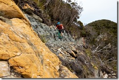 Caspar nears a switchback (Mountain biking Paparoa Track Oct 2021)