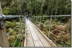 Caspar riding across a bridge (Mountain biking Paparoa Track Oct 2021)