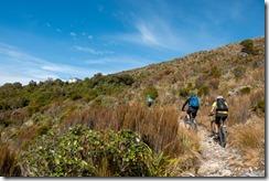Nearing the Ces Clark Hut (Mountain biking Paparoa Track Oct 2021)